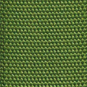 green strap