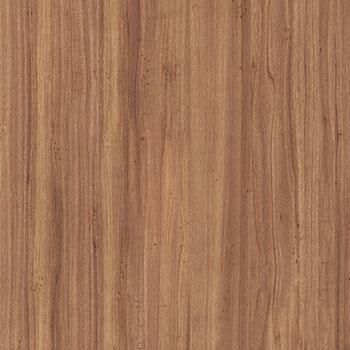 930 Atlantic White Cedar